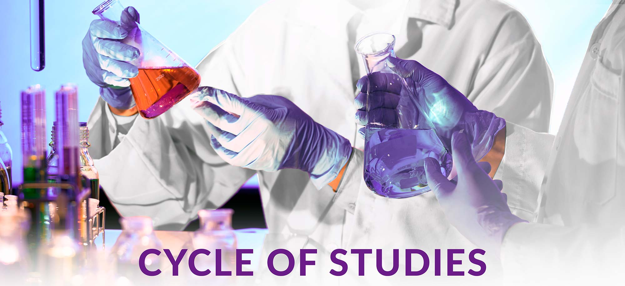 FFUP CYCLES OF STUDY