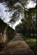 Imagem pequena da fotografia - Casa Andresen - Extremo norte do Jardim Botânico junto ao muro que encosta à Travessa de Entre-Campos