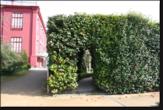 Imagem pequena da fotografia - Casa Andresen - Pormenor da vegetação do Jardim Botânico