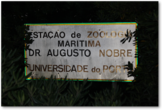 Thumbnail of the Photo - Marine Zoology Station Dr. Augusto Nobre - nameplate facing Avenida de Montevideu